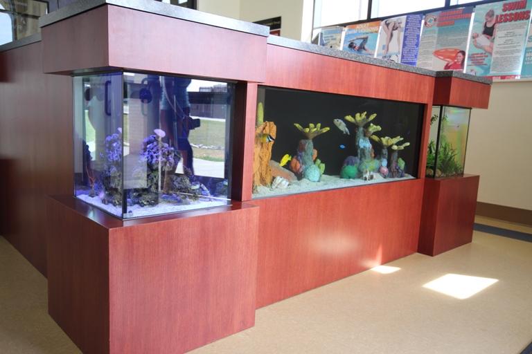 Desk Aquarium_mod